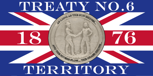 Treaty No. 6 Flag