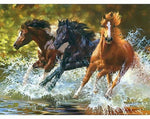 Running Horse -Paint By Number Kit