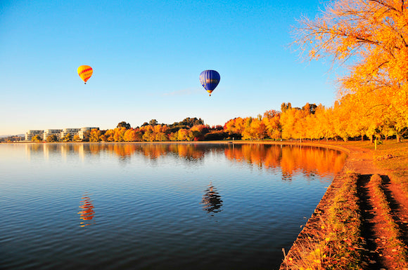 Autumn Balloons