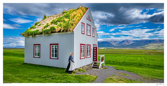 Grass Roof House II