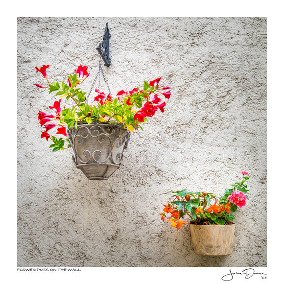 Flower Pots on the Wall