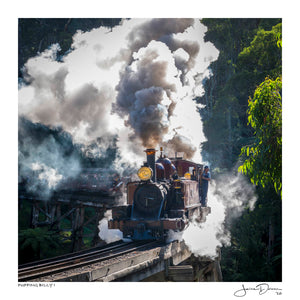 Puffing Billy I