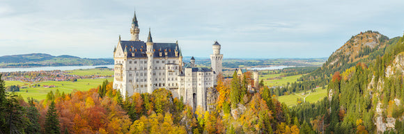 Neuschwanstein Castle (Exhibition)