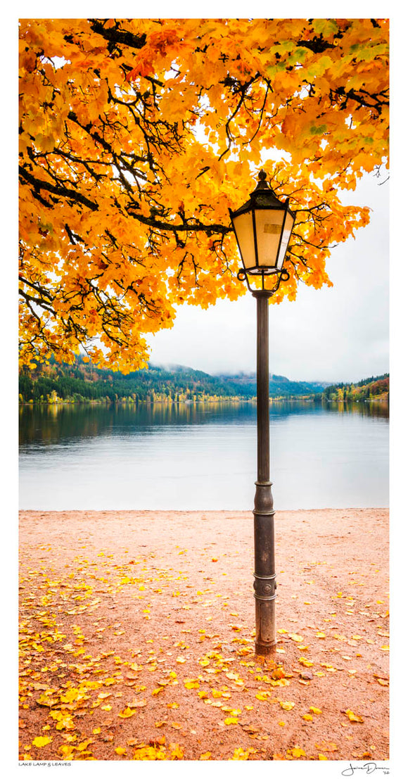 Lake Lamp & Leaves