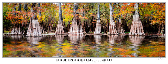 Okefenokee NP Poster