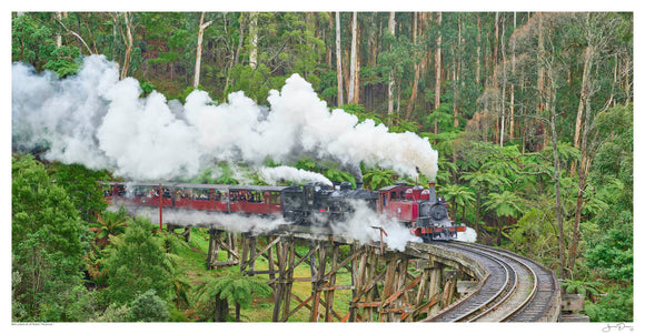Belgrave Steam Trains I