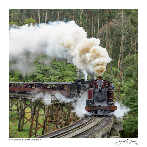 Belgrave Steam Trains II