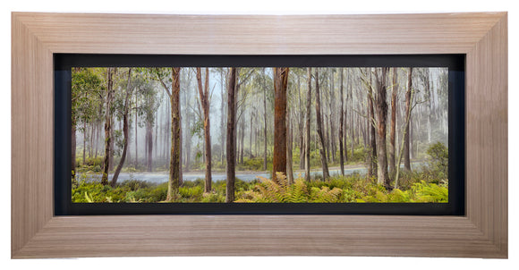 Mt Buller Mist (Exhibition)