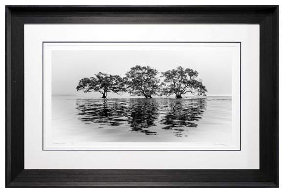 Nudgee Beach (Exhibition)