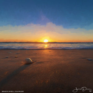 Beach Shell Sunrise