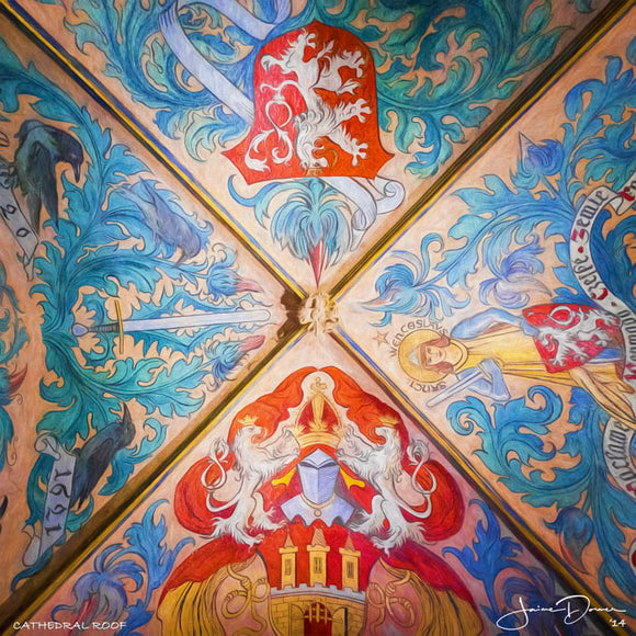 Cathedral Roof I