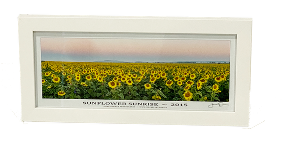 Sunflower Sunrise (Desktop Frame)