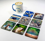 Wildlife #2 Coasters (Set of 8)