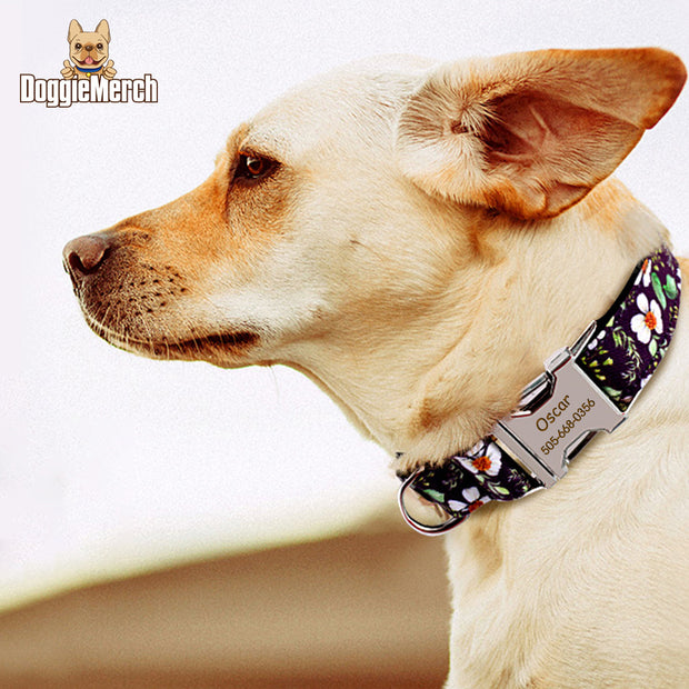 Personalized ID Collar with Engraved Buckle-NEW