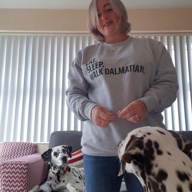 eat sleep walk dalmatian sweater