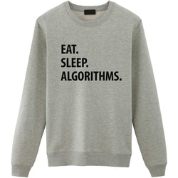 Eat Sleep Algorithms Sweater