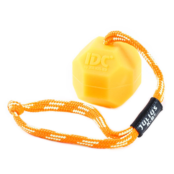Julius K-9 Fluorescent IDC Ball - Pet Bound Co.