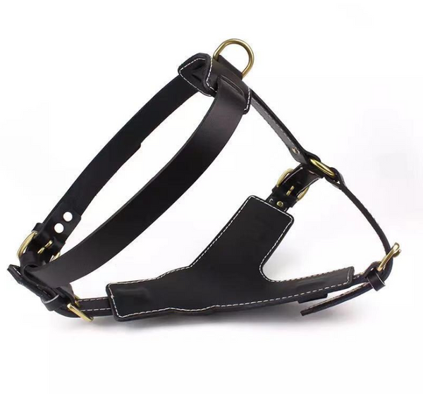 Strong Leather Harness - Pet Bound Co.