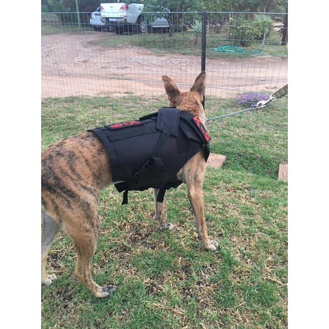 Tactical K9 Bullet Proof Vest - Pet Bound Co.