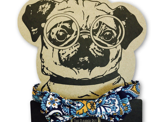 The Dapper Pet Designer Blue/Paisley Bow Tie Collar - Pet Bound Co.