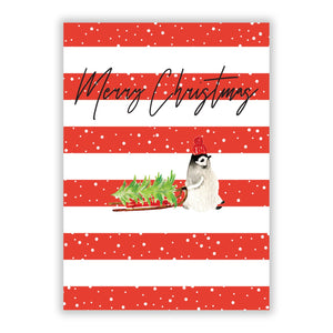 Merry Christmas Penguin A5 Flat Greetings Card
