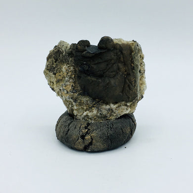 Brookite and Siderite