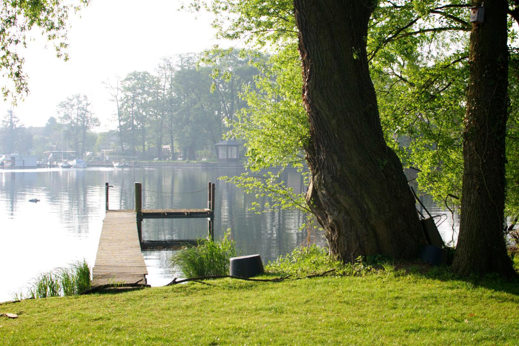Morgens an der Havel, in Caputh bei Potsdam