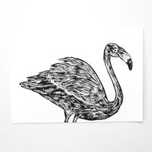 "The Flamingo, 5"" x 7"""