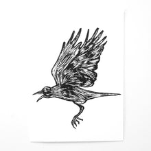 "The Black Crow, 5"" x 7"""