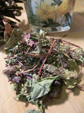 Heal All Tea - Self Heal Herb, Wild Harvest