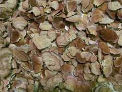 Turkey Tail Mushroom - Wild Harvested Turkey Tail Tea