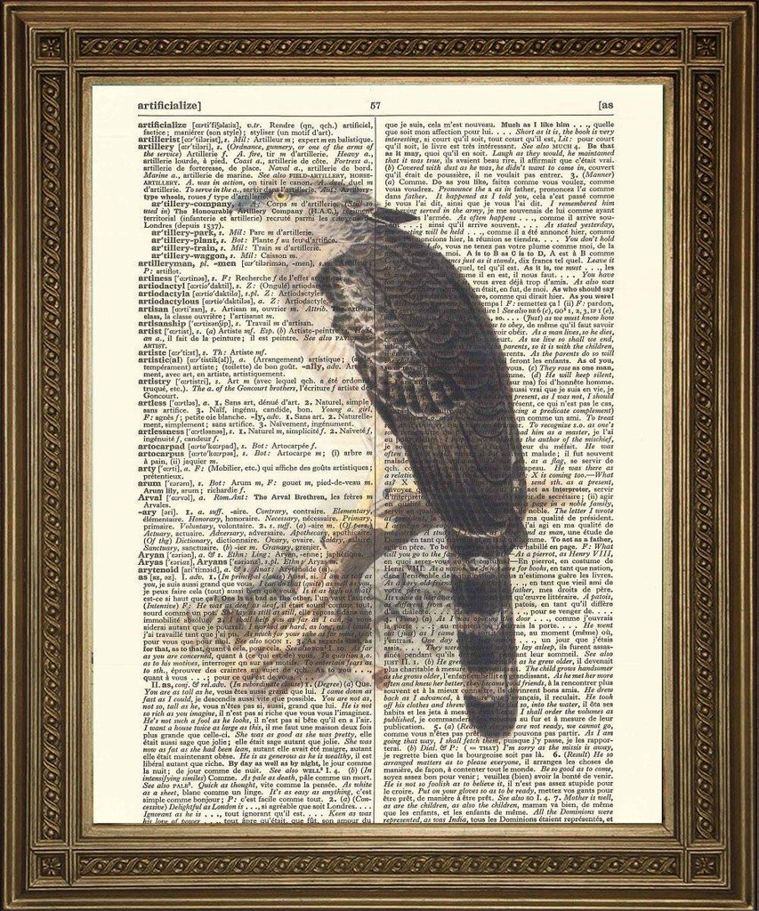 BALD EAGLE: Bird of Prey Dictionary Art Print - The Print Arcade