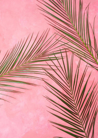 FERN LEAVES PRINT: Green on Pink Leaf Art