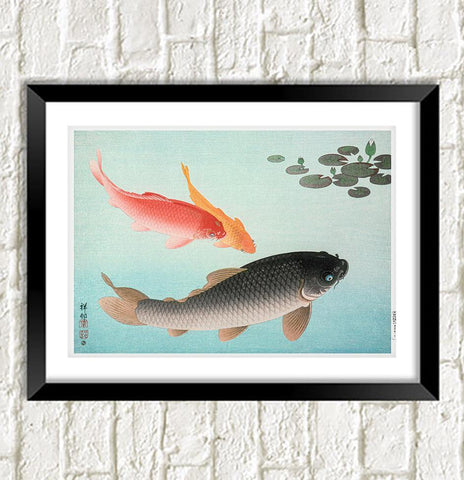 KOI CARP PRINT: Vintage Japanese Fish Illustration