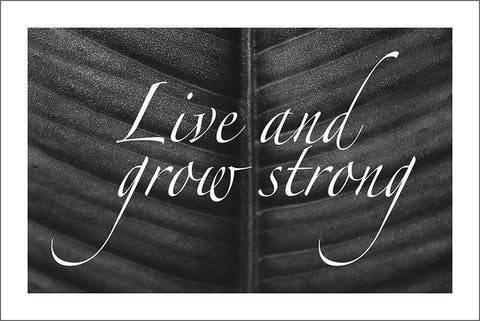 LIVE AND GROW STRONG: Inspirational Poster Art