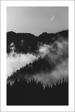 MIST AND MOONLIGHT: Black and White Photograph Wall Art