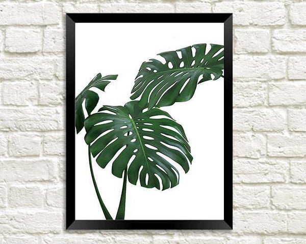 MONSTERA PRINT: Green Tropical Plant Photo Poster