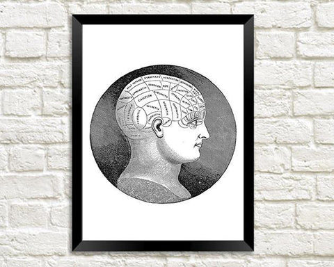 PHRENOLOGY ART PRINT: Vintage Symbolical Head Illustration