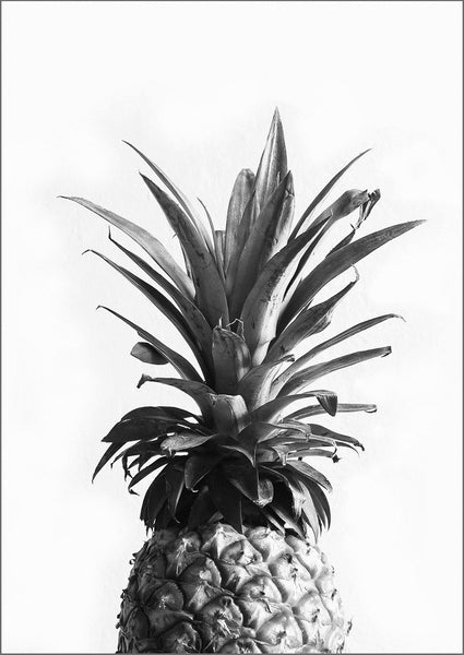 PINEAPPLE PRINT: Black and White Photography Art