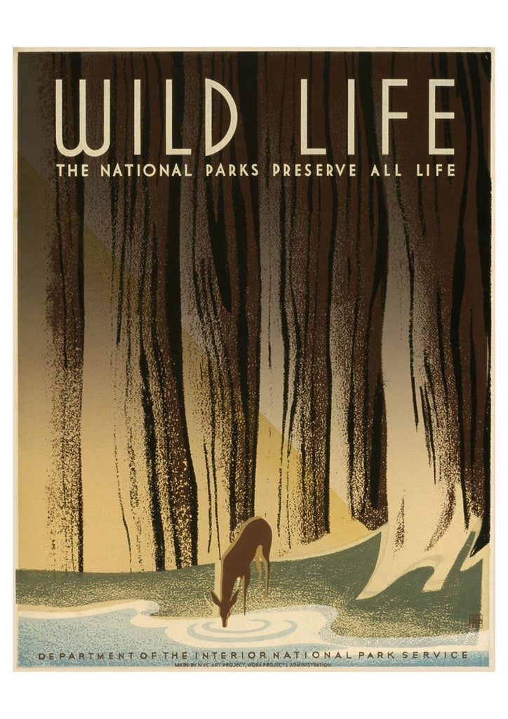 WILD LIFE POSTER: Vintage National Parks Travel Advert