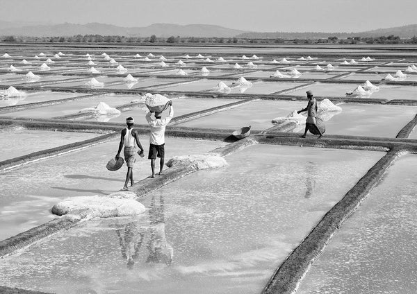 SALT FIELDS: India Photo Art Poster
