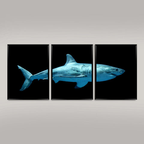 SHARK PRINTS: Great White Watercolour Art Triptych