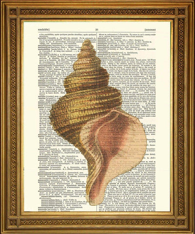 CONCH SHELL PRINT: Vintage Dictionary Seaside Art - The Print Arcade