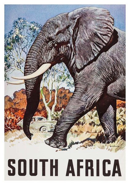 AFRICAN ELEPHANT POSTER: South Africa Travel Print - The Print Arcade