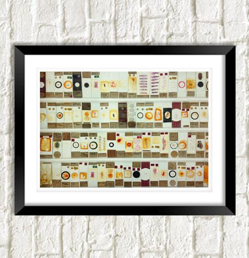MICROSCOPIC SLIDES PRINT: Bacterial Organisms Art - The Print Arcade