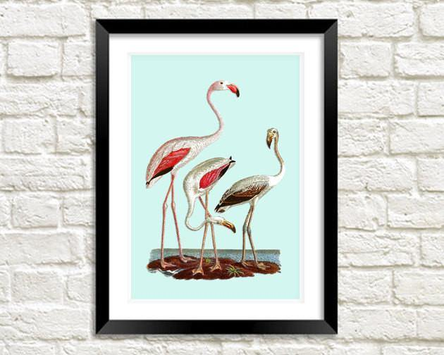 FLAMINGOS ART PRINT: Vintage Bird Art Illustration - The Print Arcade