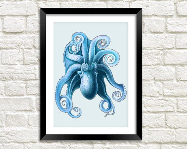 BLUE OCTOPUS PRINT: Vintage Sea Life Art - The Print Arcade