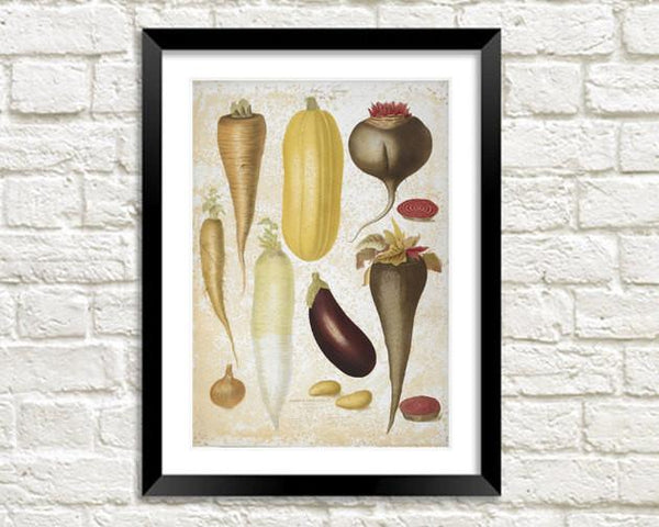 VEGETABLES PRINT: Aubergine, Corn, Parsnip, Leek Art - The Print Arcade