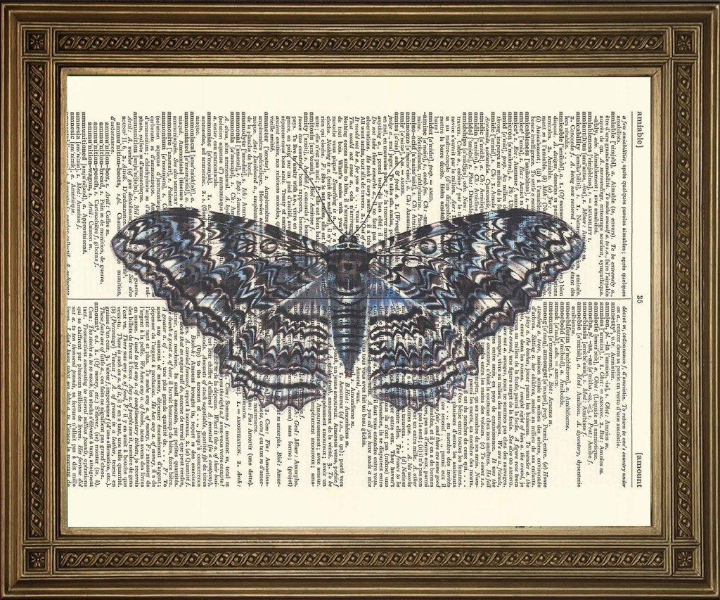 BLUE MOTH PRINT: Vintage Dictionary Art - The Print Arcade