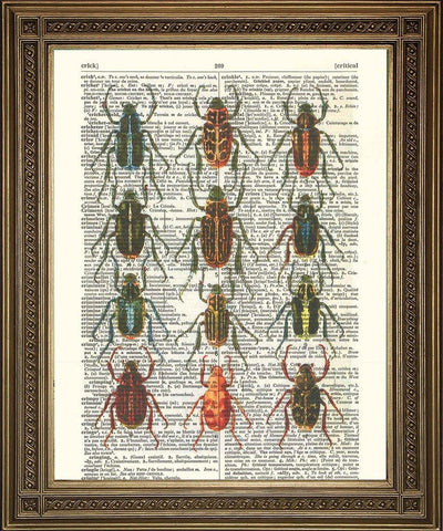 BUGS INSECT ART: Vintage Dictionary Page Print - The Print Arcade